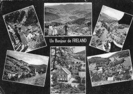 V12094 Cpsm 68 Un Bonjour De Freland - France