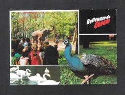 ZILLEBEKE - BELLEWAERDE SAFARI   (9347) - Ieper
