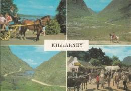Irlanda KILLARNEY - Laghi, Co. Kerry, Ireland - Kerry