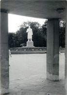 D1145 Bulgaria-Varna Stalin Statue Photo Postcard - Bulgarie