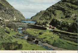 Irlanda - The Gap Of Dunloe, Killarney, Co Kerry, Ireland. - Kerry