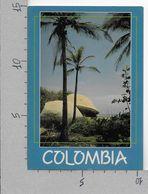 CARTOLINA VG COLOMBIA - MAGDALENA - Paisaje En El Parque Tayrona - National Park - 10 X 15 - ANN. 1993 - Colombia