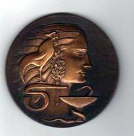 Mèdaille En Bronze Du Scupteur R.B.BARON (diam 8cm) - Professionnels / De Société
