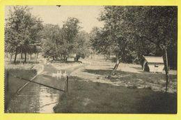 * Morlanwelz (Hainaut - La Wallonie) * (Nels) écoles Provinciales D'horticulture, Petit Elevage De Mariemont, Cygne - Morlanwelz