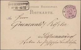 Postkarte P 12/01 Ziffer 5 Pf Aus WITTICH 15.7.1882 Nach SEIFHENNERSDORF 17.7.82 - Postwaardestukken