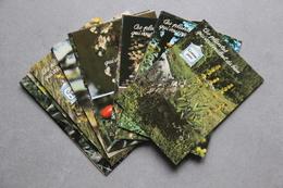 Lot De 17 Cartes : Plantes Médicinales - Plantes Médicinales