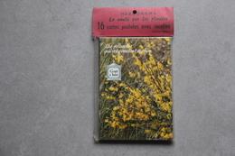 Plantes Médicinales : Lot De 16 Cartes Dans Pochette Sous Blister - Plantes Médicinales