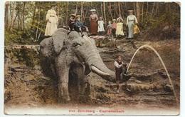 ZÜRICH Elephantenbach Frauen U. Kinder Gel. 1907 N. Amriswil - ZH Zurich