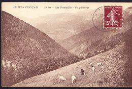 CPA - LA FAUCILLE (39 - JURA) - UN PATURAGE (N° 19bis) - ANIMEE - Other Municipalities