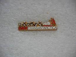 Pin's Chiens HUSKY, Transantartica, Partenaire Officiel UAP. Pin's à 2 Attaches - Animaux