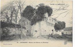 Gouesnou - Ruines Du Château De Mesléan - France
