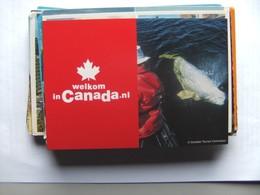 Canada Welcom - Zonder Classificatie