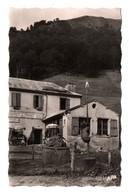 31 - LUCHON . HOSPICE DE FRANCE . L'ours Capturé Par Mr Haurillon, Propriétaire De L'Hostelerie - Réf. N°7381 - - Luchon
