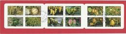 CARNET OBLITERE NON PLIE DES FRUITS POUR UNE LETTRE VERTE 12 TIMBRES 2012 - BC686 - BC 686         -            TDA247 - France