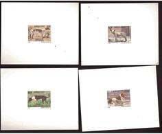 Burkina Faso.4 épreuves De Luxe. 1989. (807-810) Chiens - Burkina Faso (1984-...)