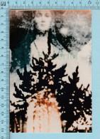 Medjugorje - Photo Prise Des Pins Par Une Pèlerine, Vierge Dans Le Buisson, Voir Memo En Arriere De La Photo - Religion & Esotérisme