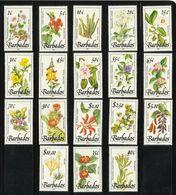 BARBADOS  1989  WILD PLANTS  FLOWERS  COMPLETE  SET(18 V)  MNH - Orchidées