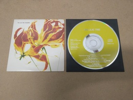 LILAC TIME Draming 1991 UK CD EP 4 Track Cardsleeve Creation Records - Music & Instruments