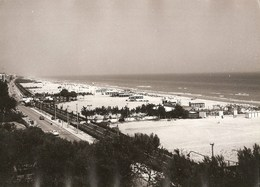 Tortoreto - REAL PHOTO (13,0 X 18,0 Cm) - Spiaggia - Teramo - Italia - Teramo