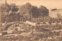 Roseraies Gantoises (20-27 Juillet 1924) - Palais Des Fêtes (Parc-Gand) - Exposition D'Horticulture - Gent