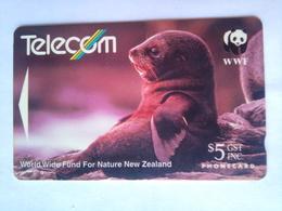 141BO Fur Seal - New Zealand