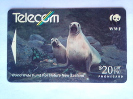 141DO Hookers's Sea Lion - New Zealand