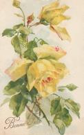 18 / 2 / 507  -  BRANCHE  DE  ROSES  JAUNES  ( Signé   KLEIN  En Bas à  Gauche ) - Klein, Catharina