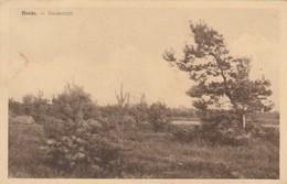 Heide-Calmpthout , Heidezicht - Kalmthout