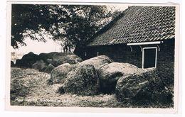 1 / MIDLAREN ; Hunebed (Dolmen) - Nederland