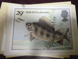 GREAT BRITAIN [GB] SG 1207 BRITISH RIVER FISHES PHQ CARD MINT - Maximum Cards
