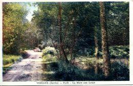 N°4151 A -cpa Vibraye -forêt -la Mare Aux Loups- - Vibraye