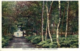 N°4151 A -cpa Vibraye -forêt -la Faisanderie- - Vibraye