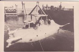 Photo -  BEAVER IV - Boats