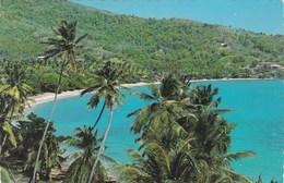 SAINT VINCENT Et Les GRENADINES - Friendship Bay, Bequia - Vue Générale - - Saint-Vincent-et-les Grenadines