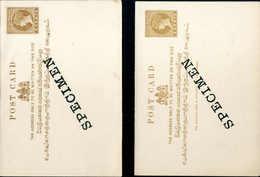 """Beleg 2 C., Post- Und Doppelkarte, Je Mit Aufdruck """"Specimen"""", Tadellos Ungebraucht.<br/><br/><span Style='color:red;fon - Stamps"""