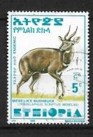 ETHIOPIA   -2000 Tragelafo Striato  USED - Ethiopia