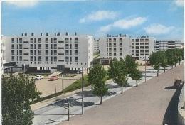 CPSM - BERRE - LA CITE MARIELLI  - Edition S.E.P.T./N°24-110 - Other Municipalities