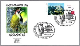 PITO REAL - European Green Woodpecker - Grünspecht - Picus Viridis. Rohr 2014 - Climbing Birds