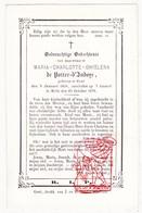 2 DP Adel Noblesse - Marie Charlotte G. De Potter D'Indoye ° Gent 1810 † Kasteel Melle 1870 - Devotieprenten