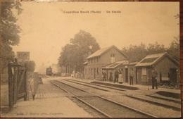 Capellenbosch(Kapellenbos)Statie(station) - Kapellen
