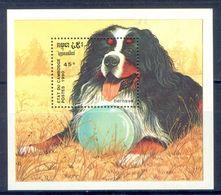 A169- Laos. Lao. Animals. Dog. - Dogs