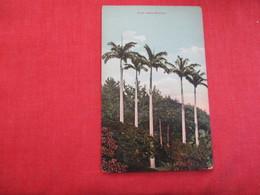 > Bermuda Royal Palms  Ref 2861 - Bermuda