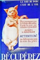 WW2  -Photo Affiche Vichyste - Récupération De La Soie De Porc - 1939-45