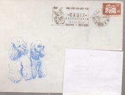 Saint Bernand DOG COVER ROUMANIE WITH CANCEL EXPO CANIS REPUBLICAN CRAIOVA, HIPODRAM 1981 - Honden