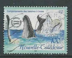 Nieuw-Caledonië, Yv 845 Jaar 2001,  Gestempeld, Zie Scan - Nouvelle-Calédonie