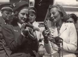 France Michelle Morgan Hotesse De L'Air Mlle Latscha Ancienne Photo De Presse 1947 - Famous People