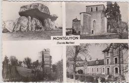 CARTE POSTALE   MONTGUYON 17 - Altri Comuni