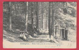 Auderghem - Sous Bois ... Près De La Source De L'Empereur - 1905 ( Voir Verso ) - Auderghem - Oudergem