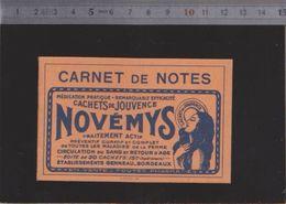 Calendrier - Carnet - 1933 - Cachets De Jouvence - Genneau Bordeaux - Calendarios