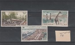 Cameroun Yvert  PA 46 * + 47 *  + 48 * Neufs Avec Charnière  - 2 Scan - Cameroun (1915-1959)